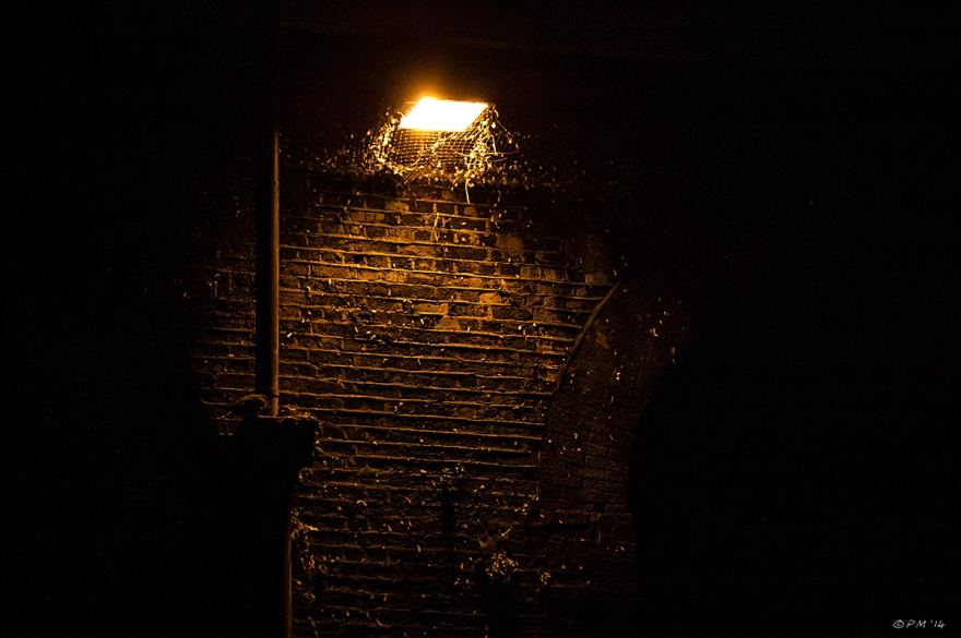 Lamp under Viaduct shining on brick wall with pigeon feathers Brighton 2014