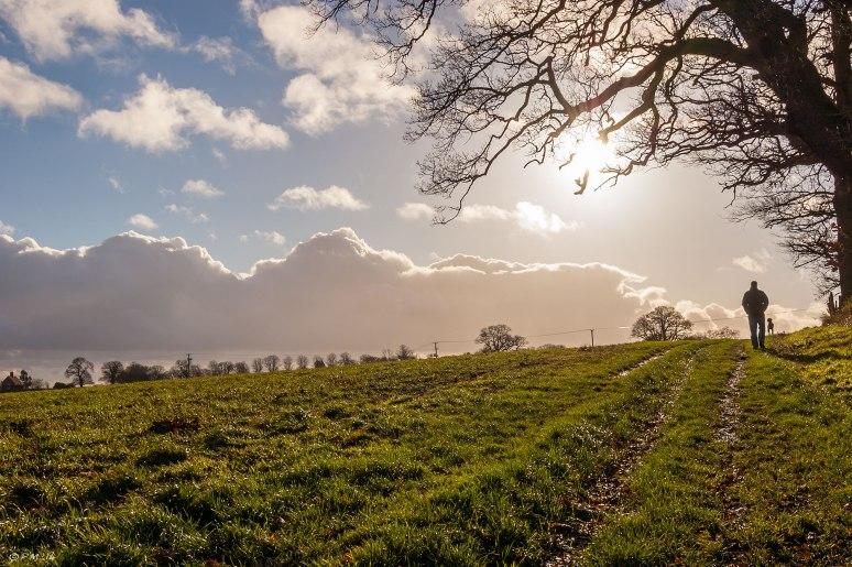 Walk_Mortimer_31-12-13