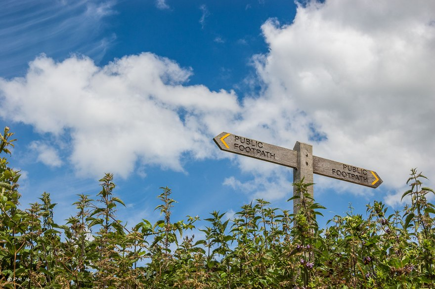 Public Footpath Sign among nettles against blue sky with clouds Lancing Hill to Coombs, South Downs National Park, Sussex UK  2014 eyeteeth.net