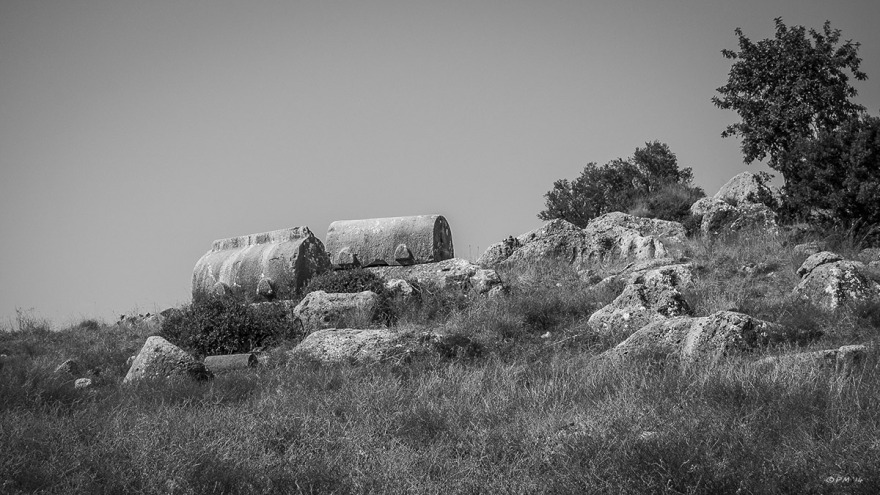 View up hill above Tepecik Necropolis with two sarcophagi among rocks, grasses and olive trees, Gelemiş, Patara, Turkey. Monochrome landscape. P.Maton 05/09/2014 eyeteeth.net