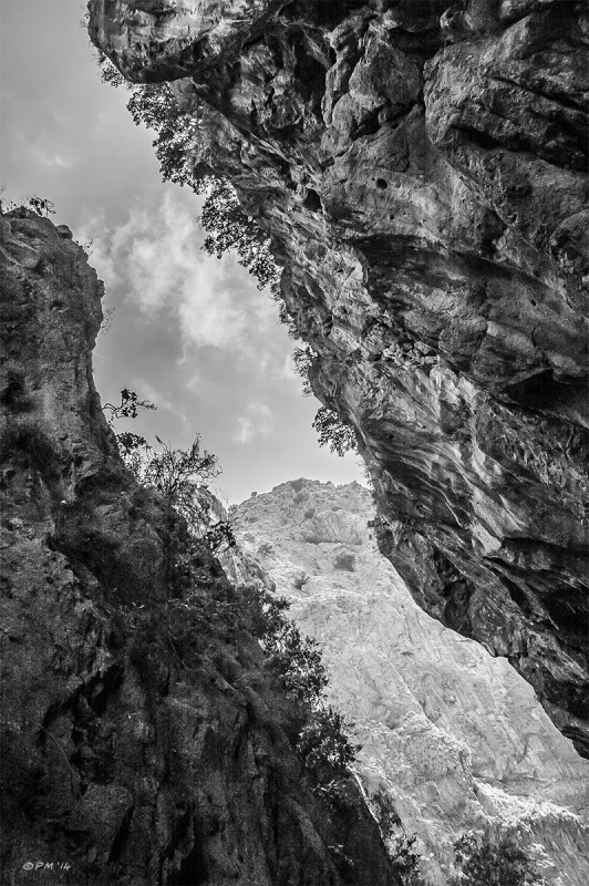 View along Saklikent Gorge with dramatic rock formations and trees clinging to cliff face. Fethiye Turkey. Monochrome landscape. P.Maton 06/09/2014 eyeteeth.net
