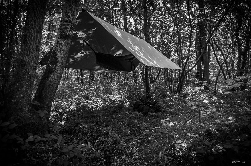 Hammock strung between trees under basha in woodland with evening sun through trees. Bushcraft. Monochrome landscape. UK. © P.Maton 2014 eyeteeth.net