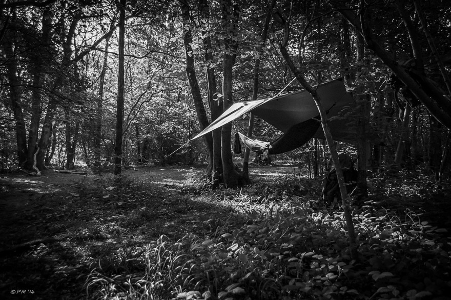 Hammock strung between trees under basha in woodland with morning sun through trees. Bushcraft. Monochrome landscape. UK. © P.Maton 2014 eyeteeth.net
