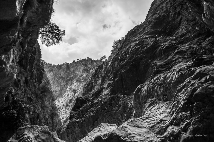 View along Saklikent Gorge with dramatic rock formations and tree clinging to cliff face. Fethiye Turkey. Monochrome landscape. P.Maton 06/09/2014 eyeteeth.net