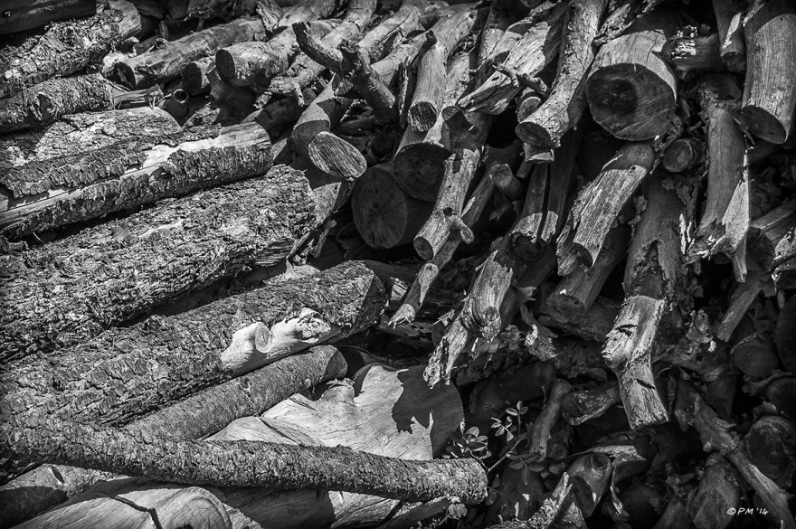 Wood pile showing cut branches and ends. Abstract Monochrome Landscape. Patara, Turkey. P.Maton 2014 eyeteeth.net