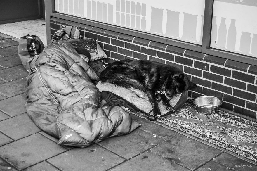 Homeless man with dog sleeping on street, Western Road Brighton. © P. Maton 2014 eyeteeth.net