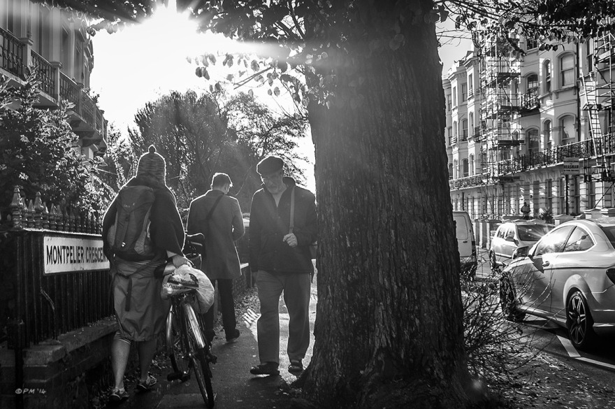 People passing by old Elm tree near Seven Dials on Monpellier Crescent with sun flare and traffic on road. Brighton UK. Monochrome landscape. © P. Maton 2014 eyeteeth.net