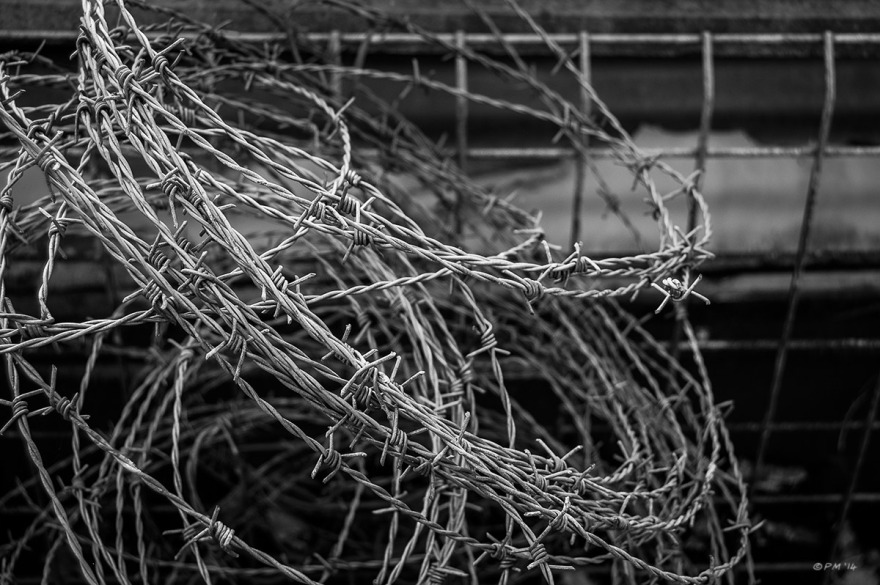 Coiled barbed wire. Monochrome Landscape. © P. Maton 2014 eyeteeth.net