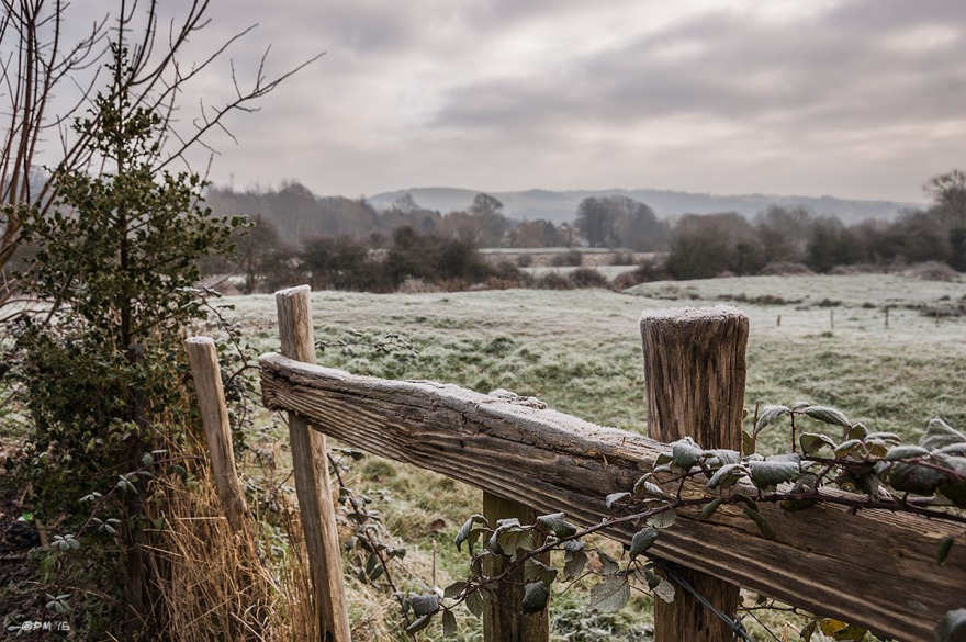 Frosty wooden fence with bramble and holly bush looking over fields to railway and Mount Caburn in distance. Landport Lewes UK. Colour Landscape. © P. Maton 2015 eyeteeth.net