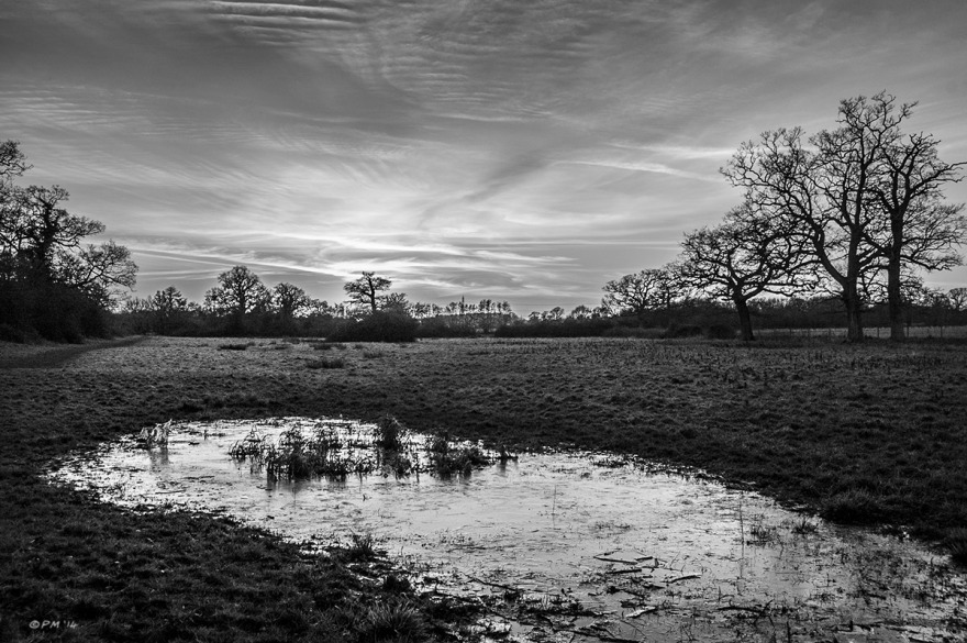 Frozen marsh with broken ice in field with oak trees and hedgerow against sunset with clouds. Mortimer, Berkshire UK. Monochrome Landscape. © P. Maton 2014 eyeteeth.net