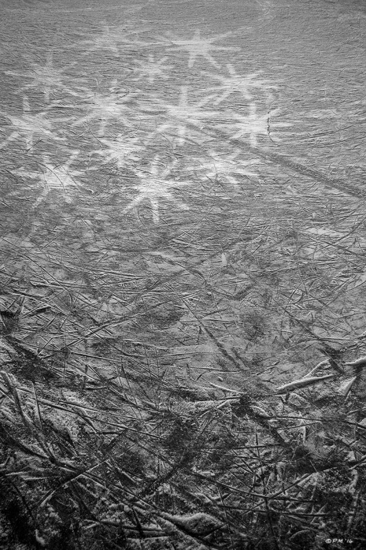 Ice rink with marks from skates and cluster of stars from lights. Outdoor Ice Rink Winchester UK. Monochrome Portrait. © P. Maton 2014 eyeteeth.net