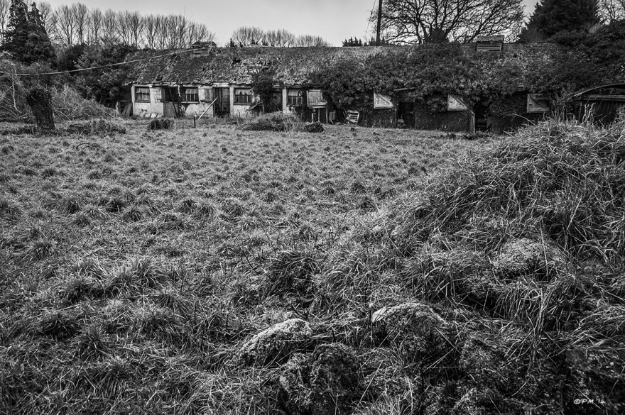 Overgrown abandoned stables with tufty grass in foreground. Ford Lane, Frilford Oxfordshire UK. Monochrome Landscape. © P. Maton 2014 eyeteeth.net