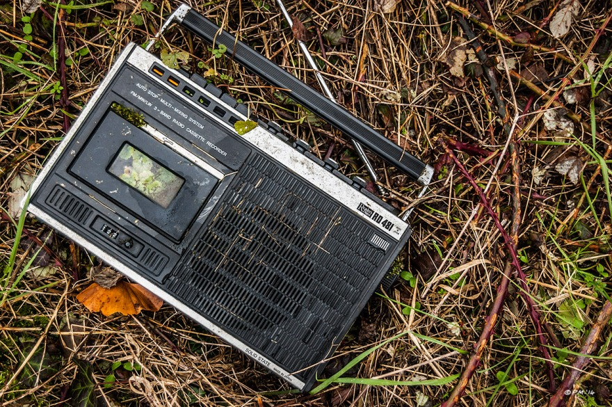 Readers Digest radio cassette player with leaves growing inside. abandoned. Colour Landscape. © P. Maton 2014 eyeteeth.net