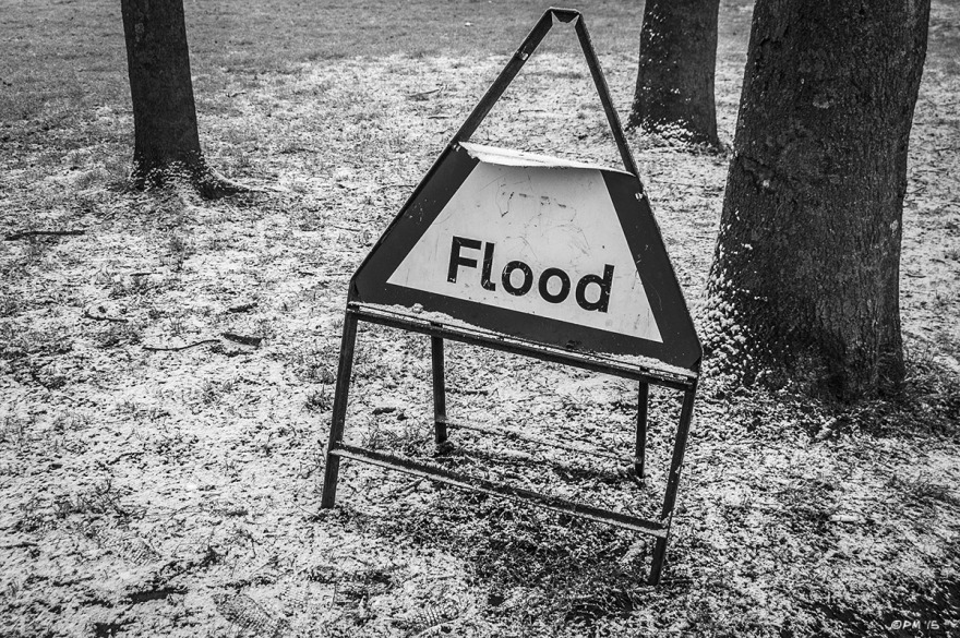 Flood warning sign stands on snow covered grass with three trees. Landport , Lewes, East Sussex UK. Monochrome Landscape. © P. Maton 2015 eyeteeth.net