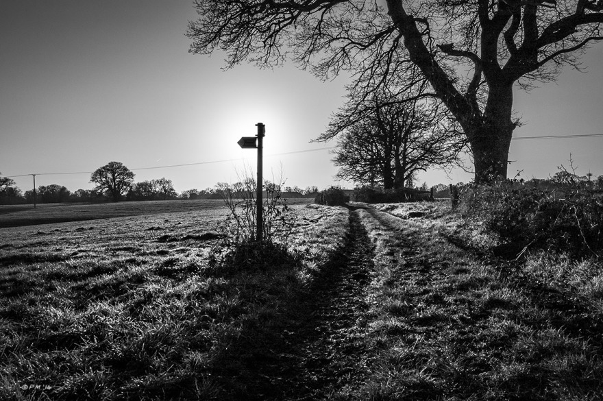 Foot Path sign in field next to dirt track silhouetted by winter sun  with Oak tree and view West towards Mann's Farm. http://thehumangallery.org/2015/01/05/the-art-of-bolle-an-athlete-in-tights/