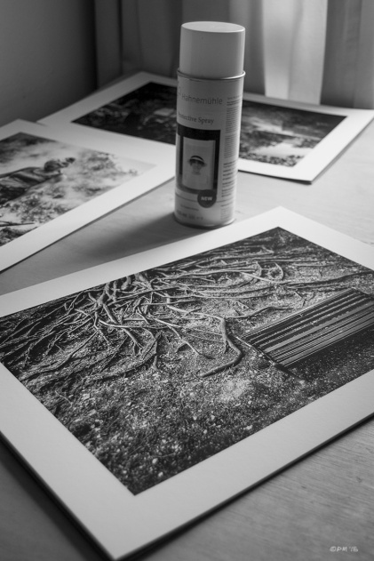 Monochrome prints on Museum Etching paper on desk next to can of Hahnemühle Protective Spray. Monochrome Portrait. © P. Maton 2015 eyeteeth.net