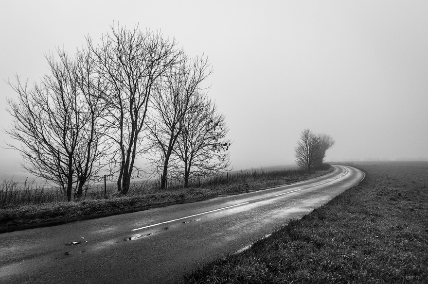 Ash trees by wet road in fog on Ditchling Road, East Sussex UK. Monochrome landscape. © P. Maton 2015 eyeteeth.net