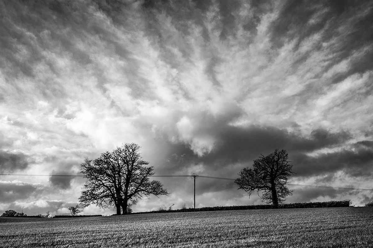 Landscape view across field with Oak trees and overhead cable silhouetted against dramatic cloud formation . Mortimer Berkshire UK © P. Maton eyeteeth.net
