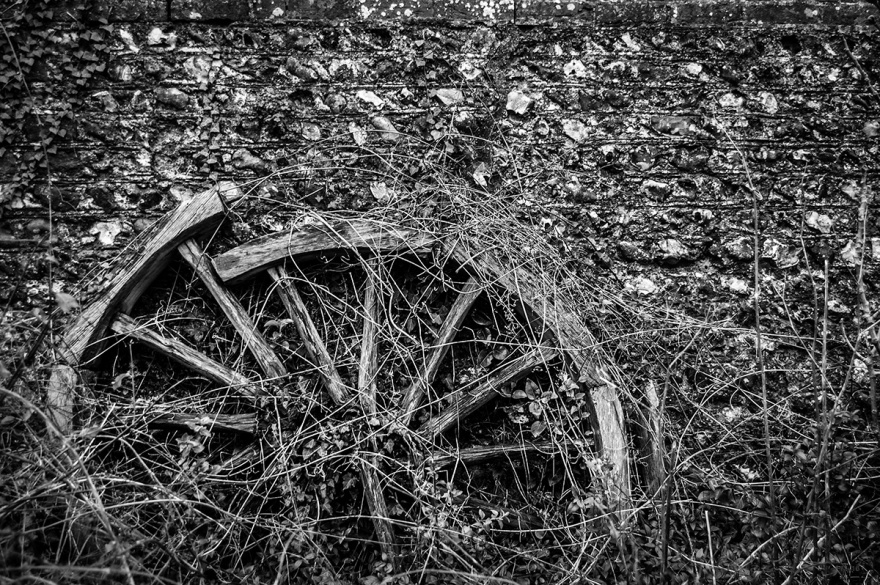 Broken old wooden cart wheel overgrown with Ivy and creepers against old flint wall, Firle East Sussex UK. Rural British black and white photograph. P. Maton 2016 eyeteeth.net