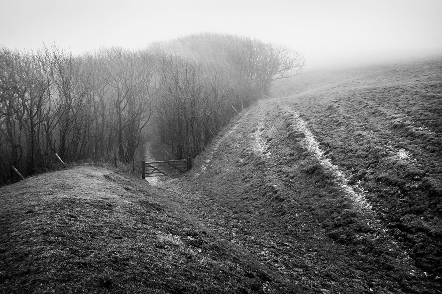 Path on hill leading to woodland through gate in fog. Fire Plantation South Downs Way East Sussex UK. Black and white rural landscape photograph. © P. Maton 2016 eyeteeth.net