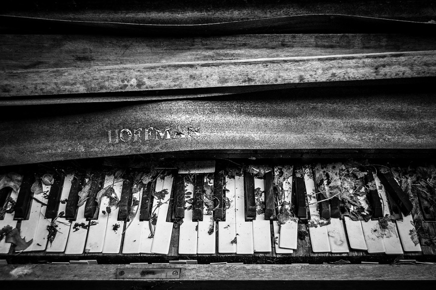 Decaying abandoned Hoffman piano keyboard with dead leaves and peeling wood veneer. Moody black and white art photography documentary. © P. Maton 2016 eyeteeth.net