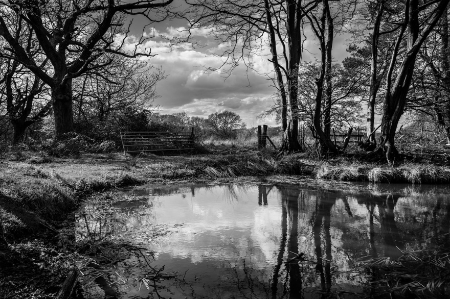 Landscape photograph with view through gateway seen over pond near Hemsley's Rough, East Sussex UK. Black and white rural British landscape photography. © P. Maton 2017 eyeteeth.net