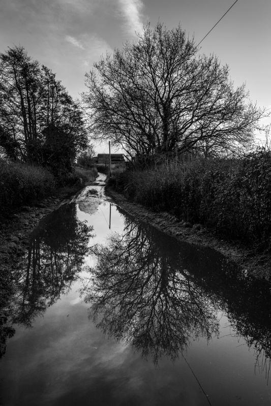 Flooded road between hedgerows, Turks Lane, Mortimer Common, Berkshire UK black and white rural documentary landscape portrait photograph © P. Maton 2017 eyeteeth.net