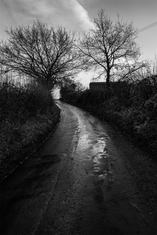Wet road leading up hill between hedgerows, Turks Lane, Mortimer Common, Berkshire UK black and white rural documentary landscape portrait photograph © P. Maton 2017 eyeteeth.net
