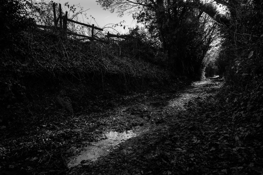 Fence silhouetted among hedgerow with path in foreground, near Nine Acre Copse, Mortimer, Berkshire UK black and white rural landscape photography countryside Britain ©P. Maton 2017 eyeteeth.net
