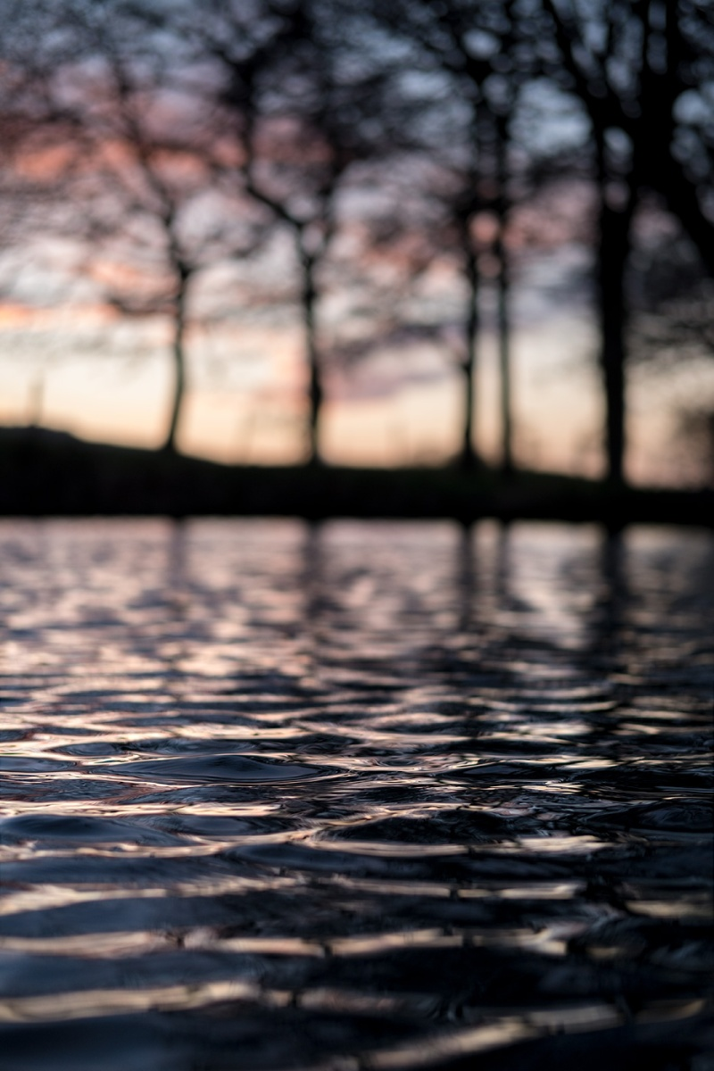 glowing sky at sundown reflected in rippling water casting shadows of trees in background, Mill Lane Poynings West Sussex UK © P. Maton 2018 eyeteeth.net