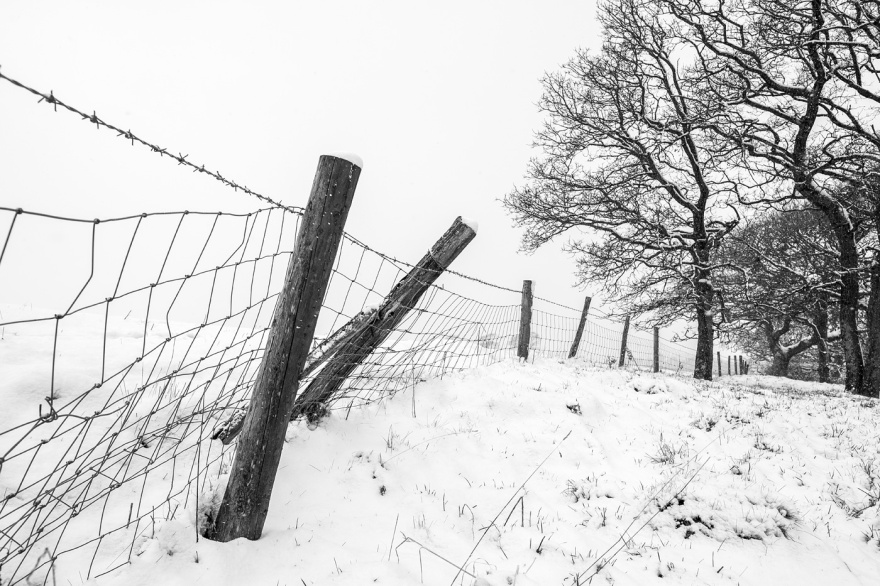 Snow scene with leaning fenceposts leading eye to distant trees Mill Lane Poynings West Sussex UK black and white rural landscape ©P. Maton 2018 eyeteeth.net