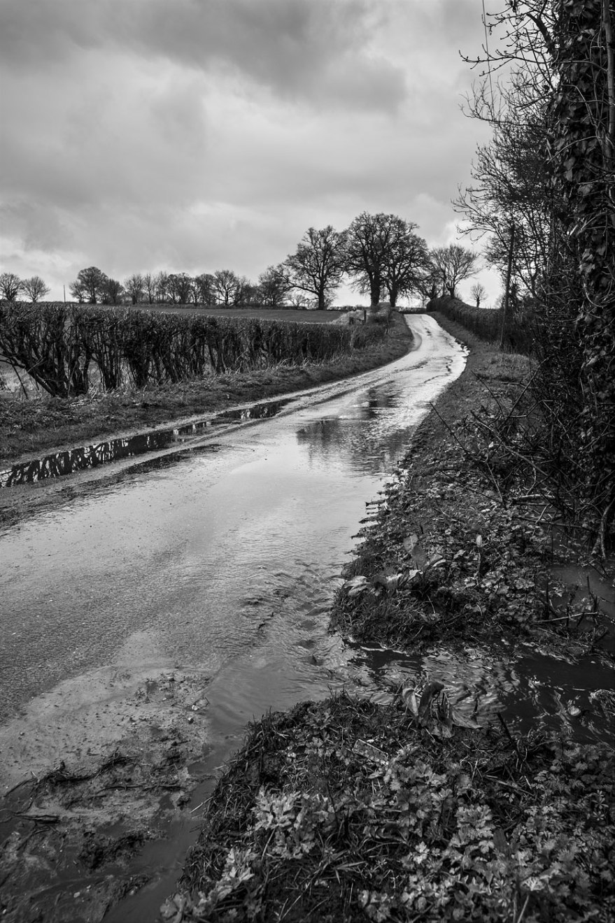 Rainwater flowing down road and through verge on Pitfield Lane Mortimer Berkshire UK black and white rural landscape portrait documentary photograph © P. Maton 2018 eyeteeth.net