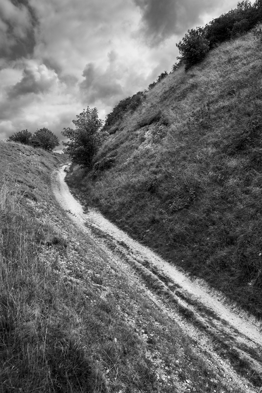 Chalk path with backed sides leading up hill with cloudy sky and row or three shrubs on horizon , strong leading lines and composition Truleigh Hill West Sussex UK ©P. maton 2018 eyeteeth.net