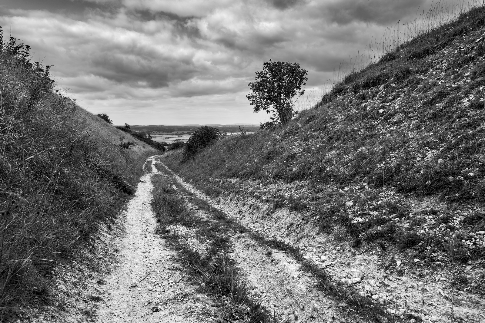 Chalk path with backed sides leading down hill with cloudy sky, shrubs and view west over sussex towards Hazelmere , strong leading lines black and white rural landscape photograph Truleigh Hill West Sussex UK ©P. Maton 2018 eyeteeth.net