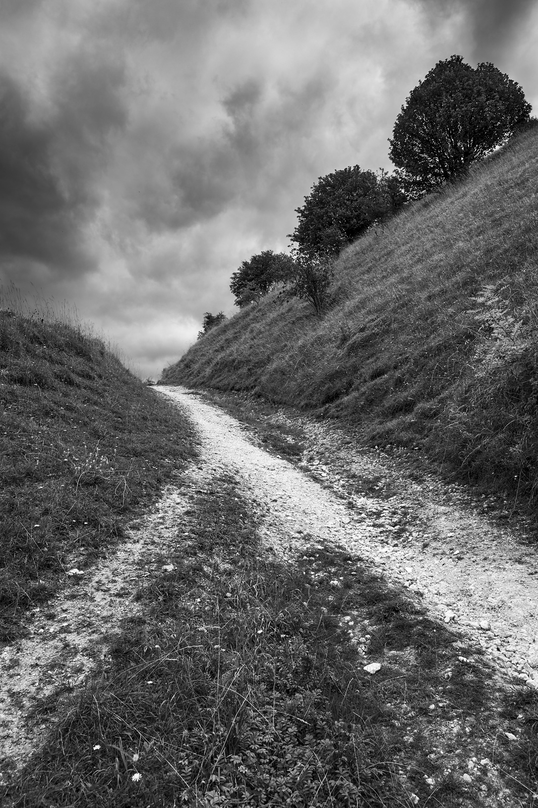 Chalk paths converging up hill with cloudy sky and row or three shrubs on horizon , strong leading lines and composition Truleigh Hill West Sussex UK ©P. maton 2018 eyeteeth.net