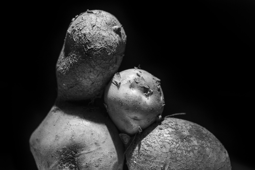 Two conjoined potatoes abstract black and white monochrome landscape lit from above with black background ©P. Maton 2018 eyeteeth.net