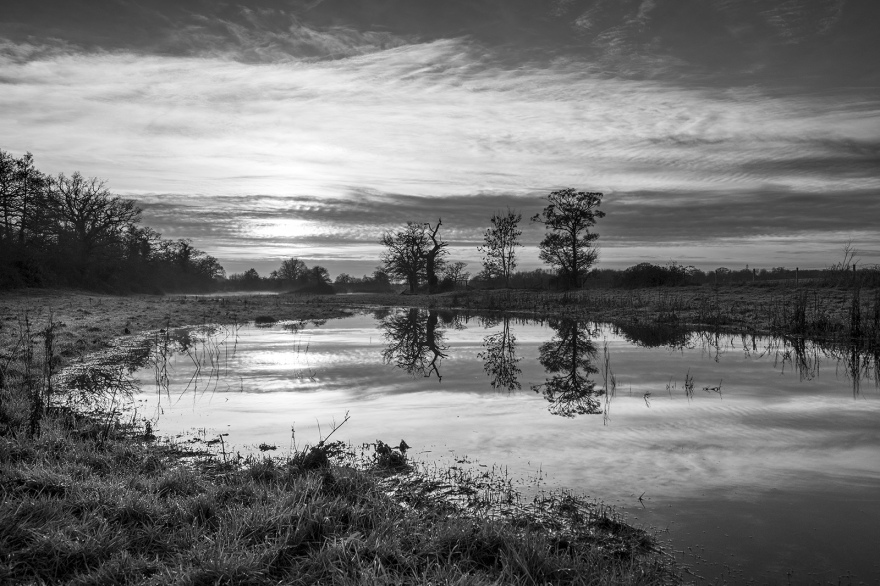 Low water sun reflected in flood water on misty meadow with trees and clouds in background Stratfield Mortimer Berkshire UK black and white portrait composition nature rural countryside documentary photograph ©P. Maton 2018 eyeteeth.net