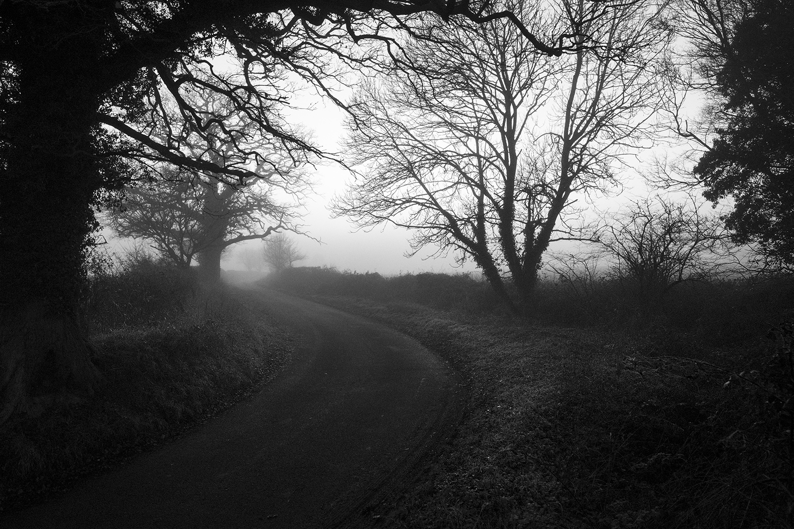 Country road meandering under trees in to fog in distance Stratfield Mortimer Berkshire UK black and white landscape composition nature rural countryside documentary photograph ©P. Maton 2018 eyeteeth.net
