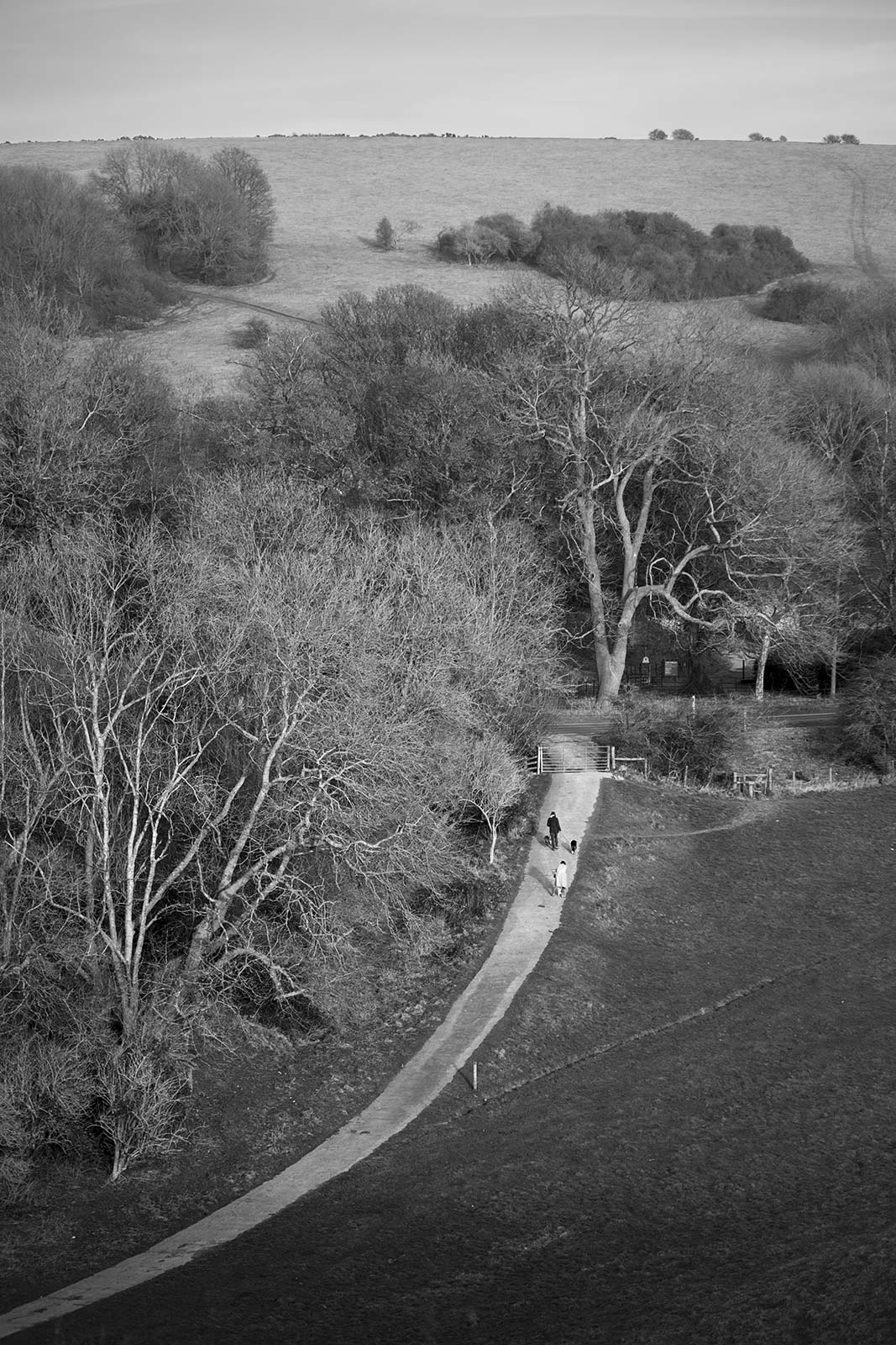 View down to dog walkers by trees on access road by Saddlescombe Farm with West Hill in distance seen from hill at the foot of Devil's Dyke West Sussex UK, black and white rural landscape portrait British countryside © P. Maton 2019 eyeteeth.net