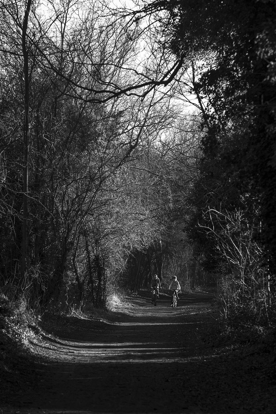 View of cyclists illuminated by sunlight through trees along Valley Walk near Rdbridge Suffolk UK black and white rural urban landscape portrait ©P. Maton 2019 eyeteeth.net