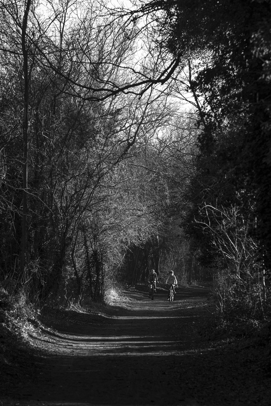 View of cyclists illuminated by sunlight through trees along Valley Walk near Rdbridge Suffolk UK black and white rural urban landscape portrait ©P. Maton 2019 eyeteeth.net