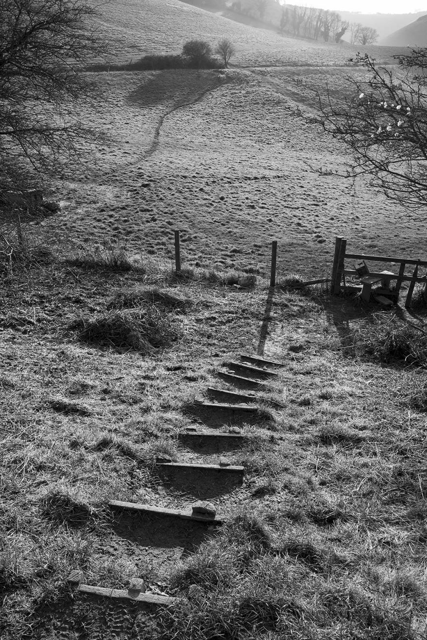 Wooden steps to stile with view of path to Devils Dyke in distance Saddlescombe Farm West Sussex UK, black and white rural landscape portrait British countryside © P. Maton 2019 eyeteeth.net