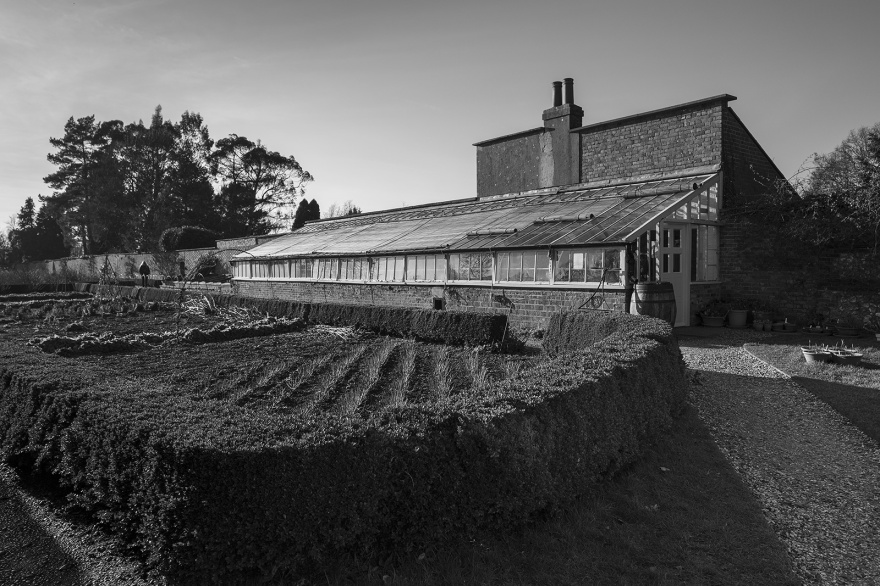 Charles Darwin's greenhouse with hedged kitchen garden in foreground, Down House Orpington Kent UK Rural landscape black and white photography ©P. Maton 2019 eyeteeth.net