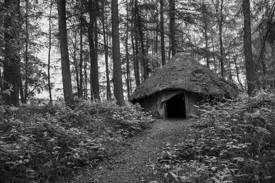 Weathered iron age round house in woodland, black and white portrait rural landscape Glynedbourne Wood East Sussex UK ©P. Maton 2019 eyeteeth.net