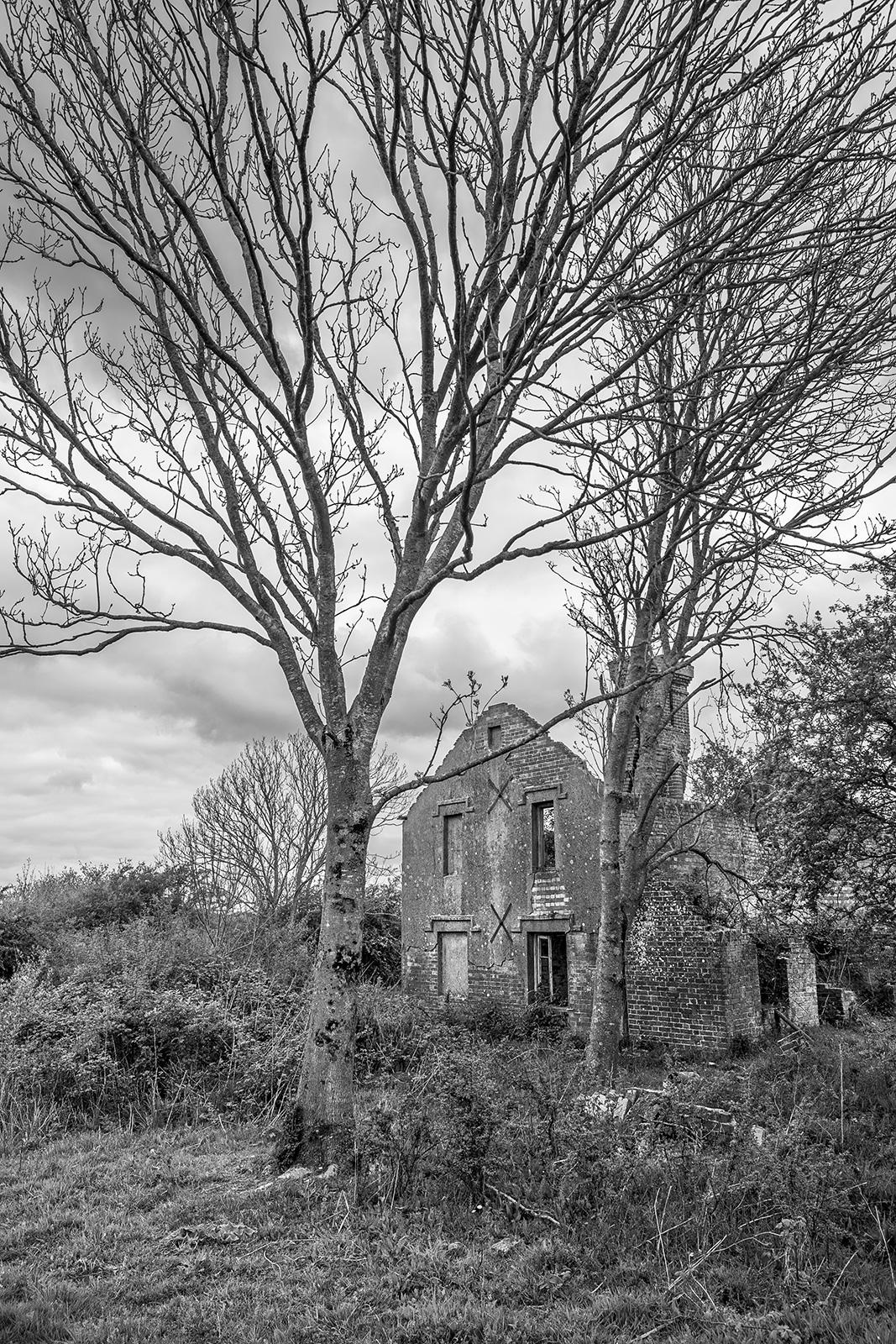 Ruined abandoned house by trees, black and white portrait rural landscape Hemsley's Rough, Halland, East Sussex UK ©P. Maton 2019 eyeteeth.net