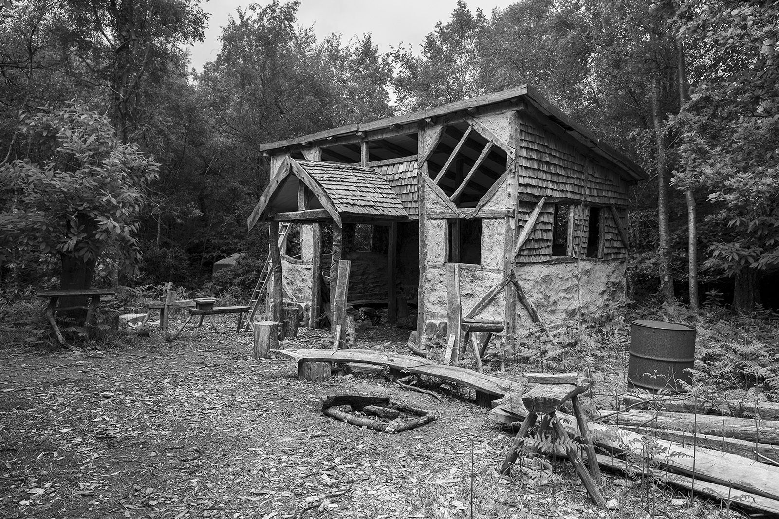Timber framed cabin with wooden shingles and wattle and daub walls in Birch and Chestnut woodland, rural arboriculture photograph Ashdown Forest West Sussex UK ©P. Maton 2019 eyeteeth.net