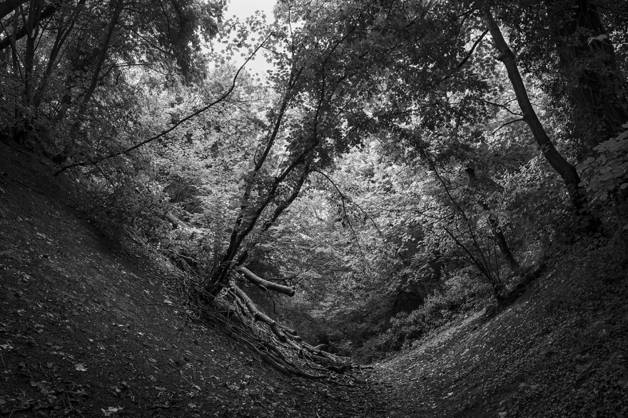 Path along bottom of ditch at Bramber Castle West Sussex UK black and white rural landscape ©P. Maton 2019 eyeteeth.net