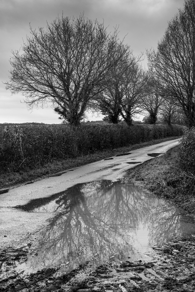 Black and white rural landscape of Pitfield Lane Stratfield Mortimer Berkshire UK ©P. Maton 2019 eyeteeth.net